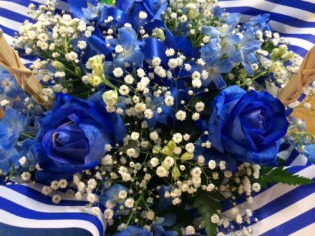 青いバラ2016.5.20